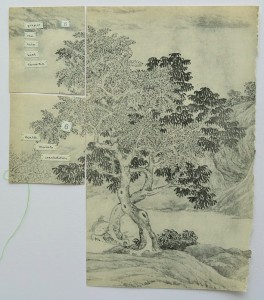 Section of a handscroll landscape entitled 'Nan Yu', ink on paper by T'ang Yin (1479-1523), Ming Dynasty. Taken from Chinese Art by Finlay Mackenzie. Spring Art Books, 1968.